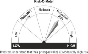 Risk o meter moderately high Axis Children's Gift Fund